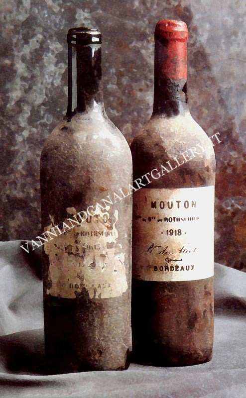Vino Mouton de Rothschild - Bordeaux