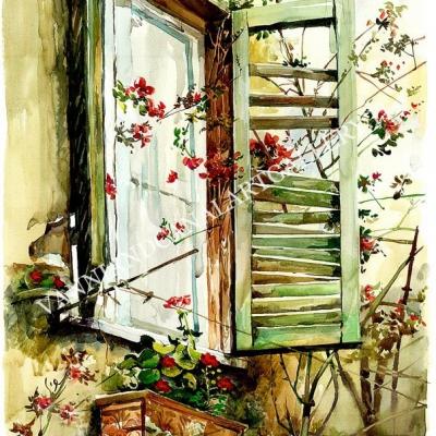 Trastevere - Finestra rotta con fiori