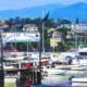 Tigullio (Cinque Terre)