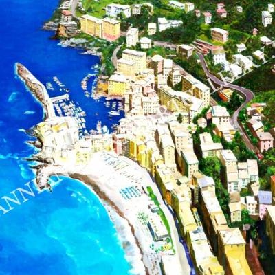 Veduta aerea (Cinque Terre)