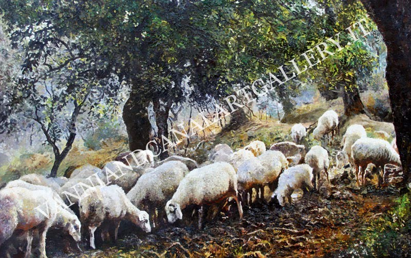 Pecore al pascolo - Toscana