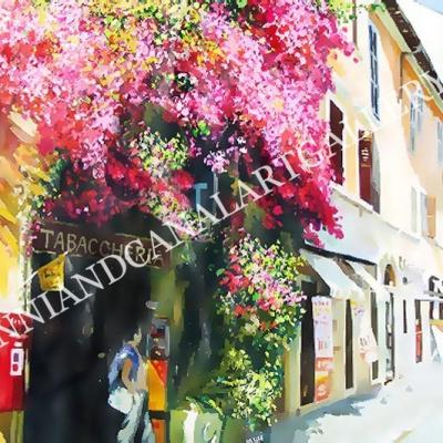 Trastevere con fiori Bouganville