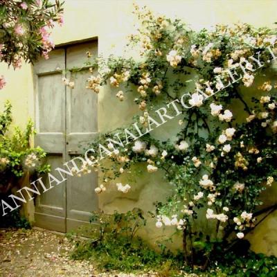 Trastevere - Vicolo con fiori (Roma)